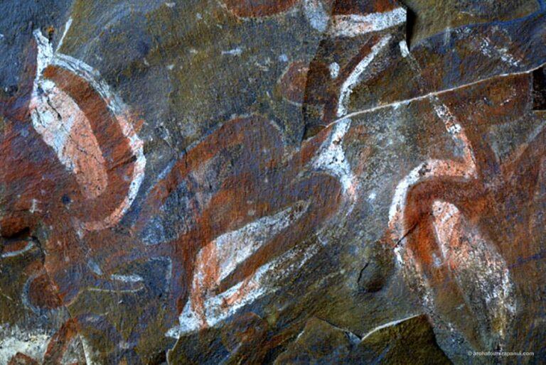 Representation d'oiseaux - Plafond de la grotte Ana Kai Tangata