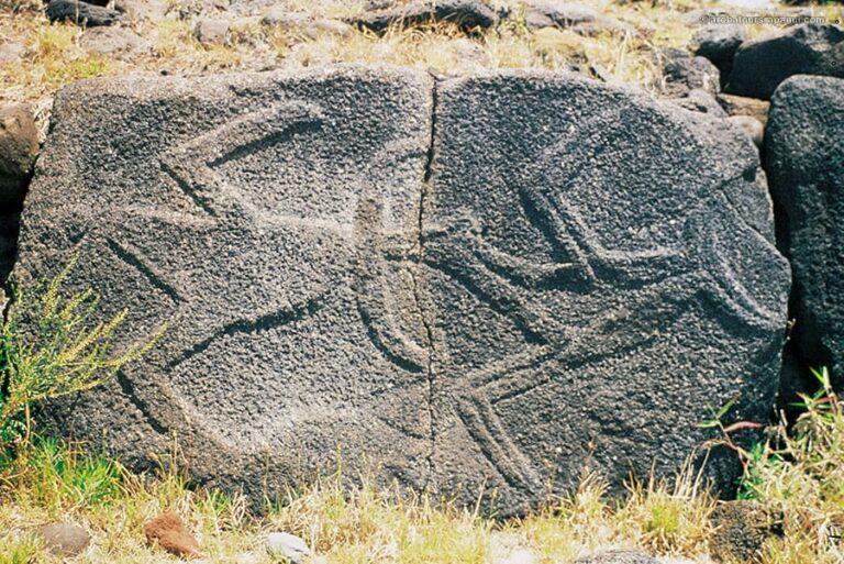 Petroglyphe d'oiseaux - Dalle au dos de l'ahu Nau Nau