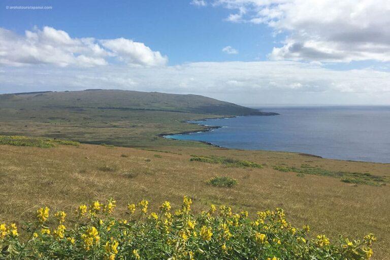 Vue sur toute la cote Nord - Ile de Paques