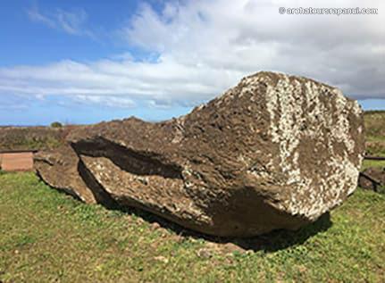 Moai couche sur le ventre - Statue renversee - Ile de Paques