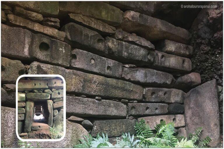 Fougere dans un grotte - Site archeologique a l'ile de Paques