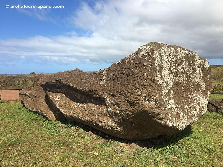 Moai couché sur le sentier