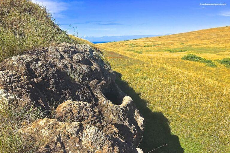 Grande roche sculptee - Balade sur Rapa Nui